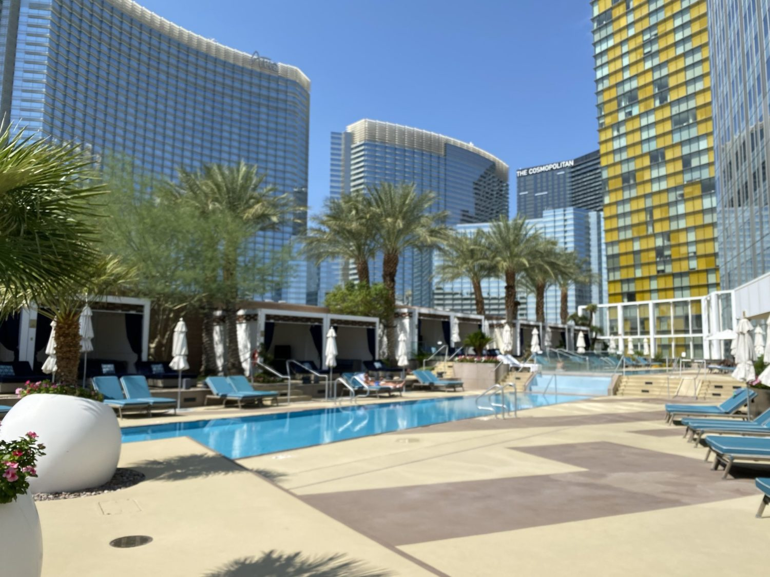 waldorf astoria las vegas pool