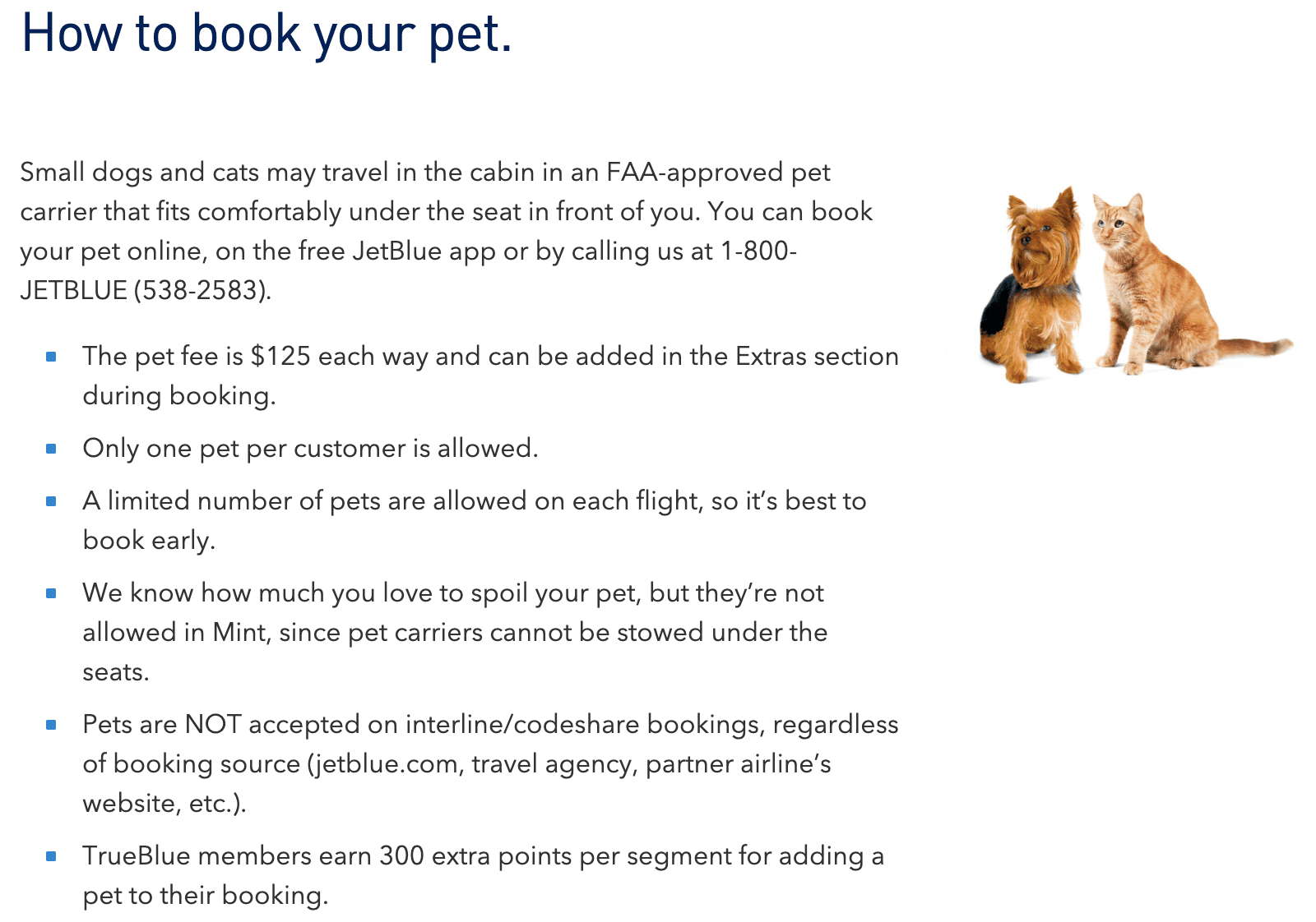 JetBlue Pet Policy